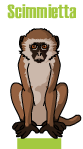 Si nasce Scimmietta, si diventa Homo Sapiens in Sheeboo.
